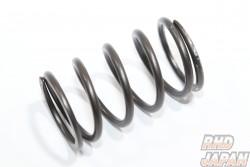 HKS GT Wastegate Spring - Silver