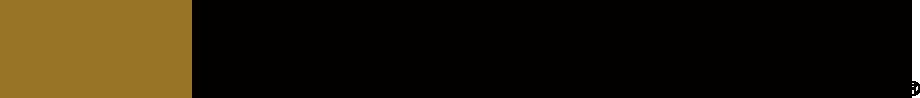 mzspeed_logo_bk.png